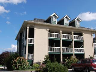 Lovely 1 bedroom Condo in Jefferson - Jefferson vacation rentals