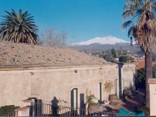 prestigious Sicilian villa of the 800's on the slopes of the Etna. - Trecastagni vacation rentals