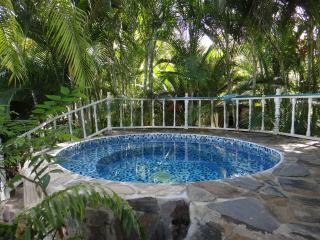 Magnificent villa on playa bonita - Las Terrenas vacation rentals