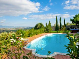 Villa Torricella panoramic swimming pool Tuscany - Monte San Savino vacation rentals