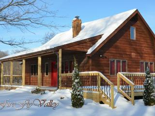 Nice Cabin with Deck and A/C - Carbondale vacation rentals