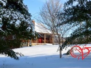 Bright 3 bedroom Carbondale Cabin with Deck - Carbondale vacation rentals