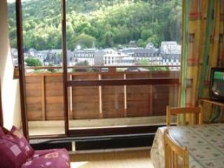 Comfortable 1 bedroom Le Mont-Dore Apartment with Central Heating - Le Mont-Dore vacation rentals