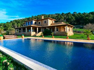 Finca Son Romani - Costitx vacation rentals