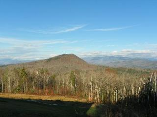 White Mountain Vacation Rental Condo with mountain views. (LOM3M) - White Mountains vacation rentals