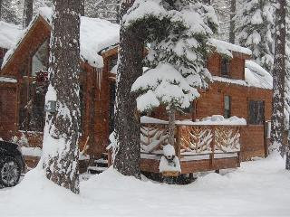 Cozy Knotty Pine Cabin - South Lake Tahoe vacation rentals