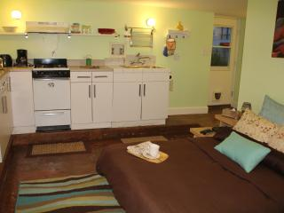 Heart of the Mission: pied-à-terre gem - San Francisco vacation rentals