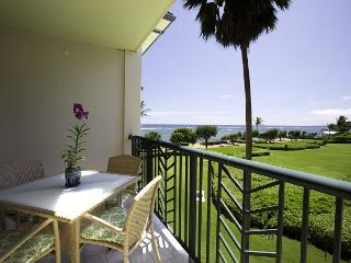H303 PRIVATE Ocean WOW! Fast WIFI!  CALL - Kapaa vacation rentals