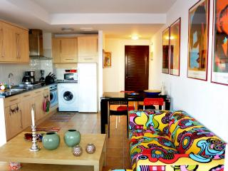 Cotillo Country 40-D - El Cotillo vacation rentals