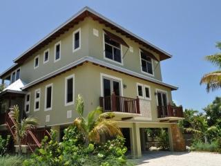 OCEAN FRONT VILLA- Great Heron House - Marathon vacation rentals