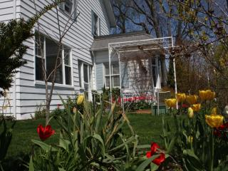 Laidlaw room in a century home with modern comfort - Kingsville vacation rentals