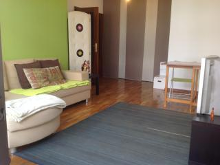 Cozy&Cool apt by Central Metro St. - Northern Portugal vacation rentals
