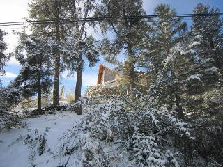 Lovely Mountain-View Retreat - Pine Mountain Club vacation rentals