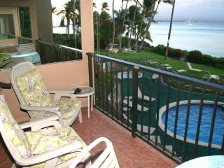 Comfortable 1 bedroom Condo in Maalaea with Internet Access - Maalaea vacation rentals