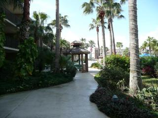 Luxurious Condo with Olympic Size Pool - South Padre Island vacation rentals