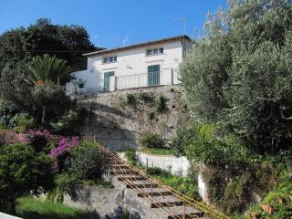 I Tre Alberi - Self Catering - Sicily by the sea - Giardini Naxos vacation rentals