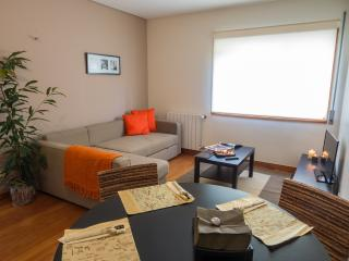1 bedroom Apartment with Internet Access in Matosinhos - Matosinhos vacation rentals