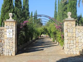 Finca Sa Garriga - Marratxi vacation rentals