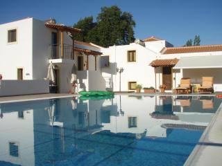 Skiathos Two Parisis Villas with pool.The 2 villas can accommodate 10 people. - Troulos vacation rentals