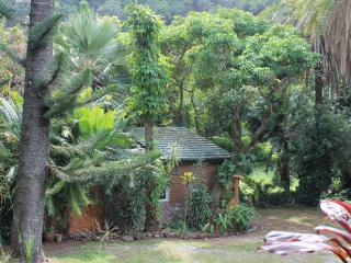 Gingerbread House: Flowers, Forest & Lush Jungle - Kihei vacation rentals