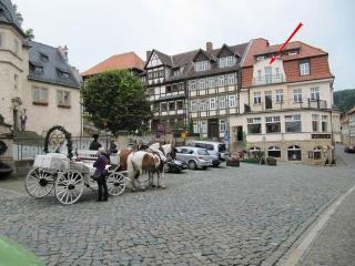 Chiplakoff - Holiday  apartment - Saxony-Anhalt vacation rentals