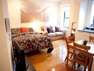 Cozy & Clean apartment! Fun, safe neighborhood! - LaFayette vacation rentals