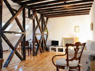 Historical Central Penthouse fully renovated - Lisbon vacation rentals