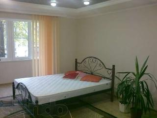 I rent an apartment in Donetsk - Donetsk vacation rentals