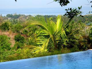 5-bdr spacious VILLA in BALI overlooking LOVINA BAY. - Lovina vacation rentals