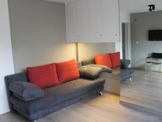 Sunny apartment 60m2 in mansion with huge terrace - Ostende vacation rentals