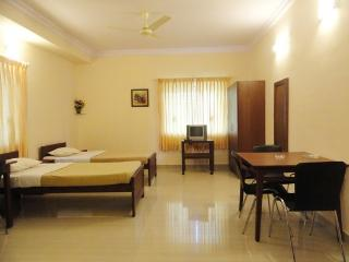 TULIPS HOMESTAY : NON-A/C DELUXE STUDIO ROOM, B1 - Mysore vacation rentals