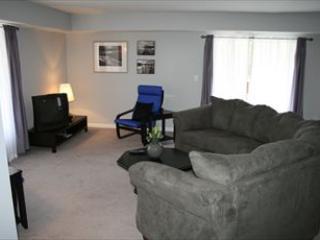 Family Room - Blue Heaven 106534 - Mineral - rentals