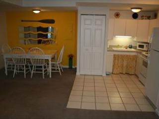 Sunny Daze 109577 - Locust Grove vacation rentals