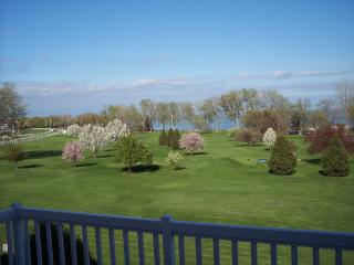 Stunning View, pool, golf, Cedar Point, Lake View - Kelleys Island vacation rentals