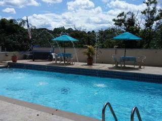 Jibarita Vacation Apartments - Morovis vacation rentals