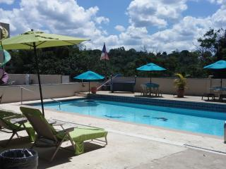 Nice Condo with Deck and Internet Access - Morovis vacation rentals