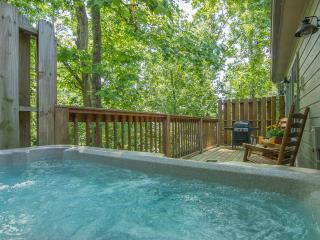 3 Mi Dollywood/Splash Country, Free Wifi,Hot Tub,2-Pools,PS2,Romantic Getaway - Pigeon Forge vacation rentals
