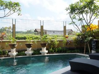 Three Bed Room Pool Villa Rental Ubud with rice filed view - Ubud vacation rentals