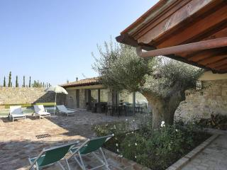 Special rates for staying within 14.06. Enjoy! - Montaione vacation rentals