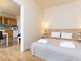 Picasso Apartment Prague 2 people - Bohemia vacation rentals
