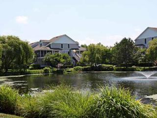 56067 Pinewood Drive - Cedar Neck vacation rentals