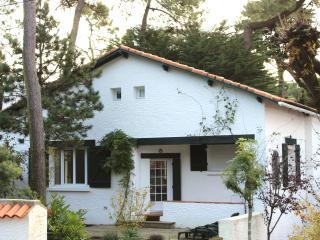 Villa In La Baule Les Pins 150m From The Beach - La-Baule-Escoublac vacation rentals
