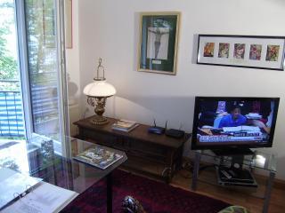 Vienna City Apartments, the comfortable apartments - Vienna vacation rentals