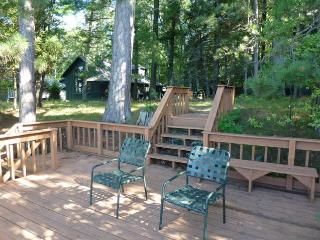 Higgins  Lakefront Cottage in Deep Woods - Higgins Lake vacation rentals