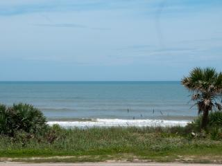 Gorgeous 2 bedroom Apartment in Flagler Beach - Flagler Beach vacation rentals