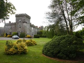 Fanningstown Castle, Adare, Co Limerick  Sleeps 10 - Adare vacation rentals