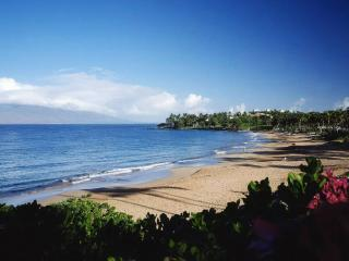 Wailea~Walk to Beach, Sunset on Lanai, Remodeled - Maui vacation rentals