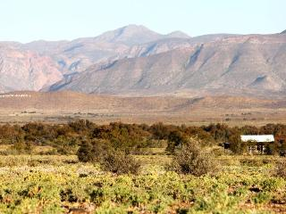 WOLVEKRAAL GUEST FARM in the Great Karoo - Prince Albert vacation rentals