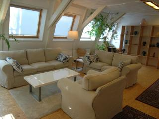 Quiet Loft in Centre, 2-bedrooms, direct bus from Airport, free WIFI - Amsterdam vacation rentals