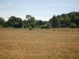 Large, traditional farm house in Southern Sweden - Yngsjo vacation rentals